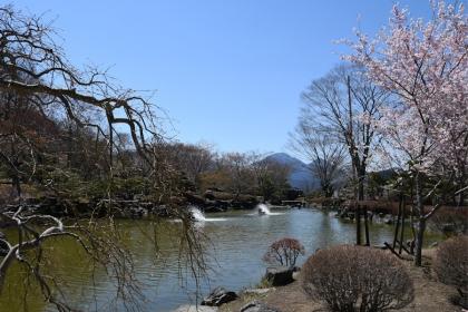 Sakura2019_v2_04